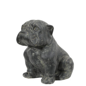 Statut Bulldog