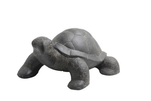 statue tortue