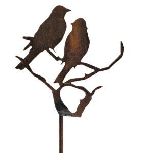 Silhouette oiseaux sur branche
