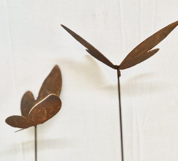 Papillon mix en acier