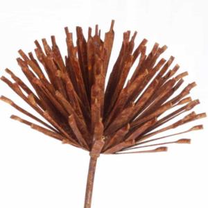 Tuteur fleur Allium en fer brut