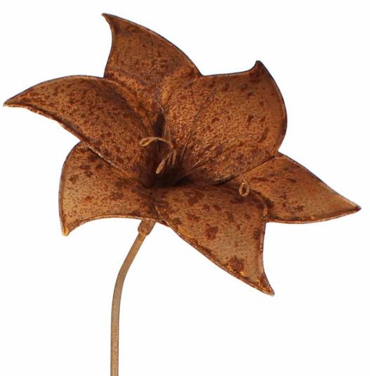 Tuteur fleur Amarylis en fer brut