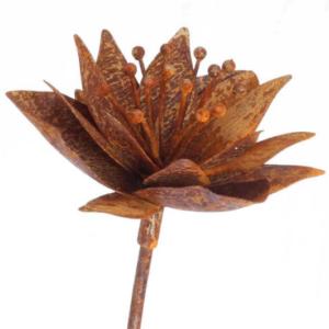 Tuteur fleur Anémone en fer brut