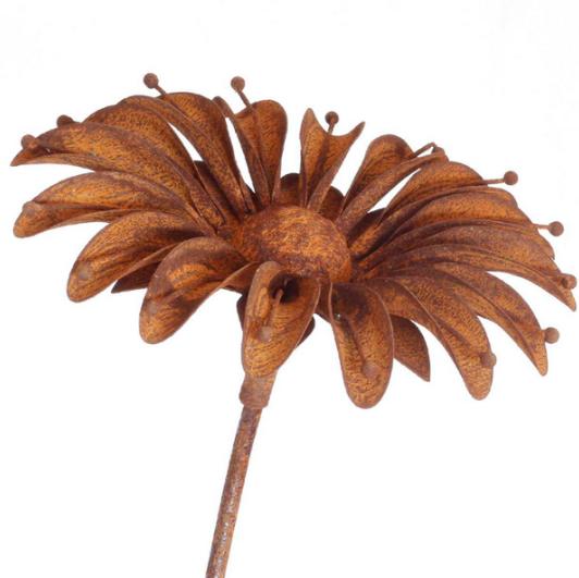 Tuteur fleur Marguerite en fer brut