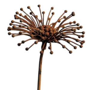 Tuteur fleur Pissenlit en fer brut